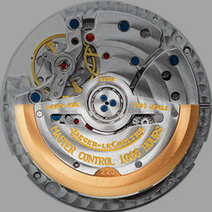 Oscillating weight (Rotor)