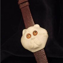 A persian cat wristwatch with the eyes indicating time